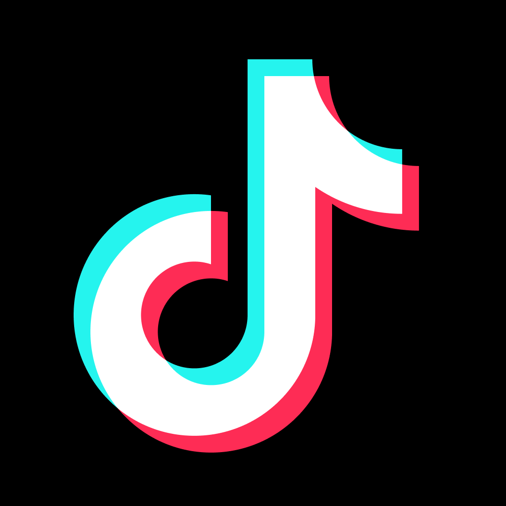Softreg TikTok Accounts with 1000 Fans, email included US ip Registered